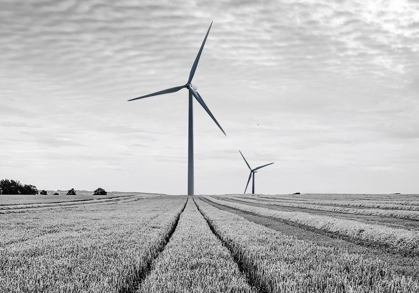 Renewables R&D Tax Credits blog